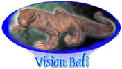 vision bali provided all services for tourist and products for business in Bali